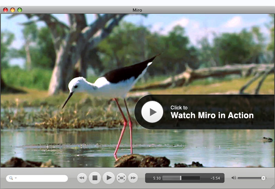 Miro HD Video Player